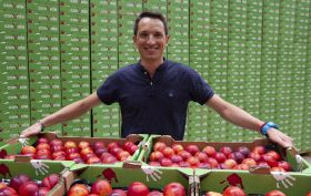 Conjuntfruit launches organic stonefruit line