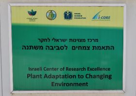 Israel breeding for climate resistance