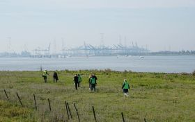 Antwerp requests sustainable proposals