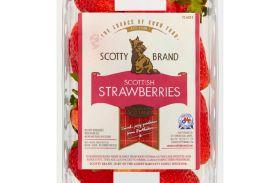 National Asda listing for Scotty strawberries