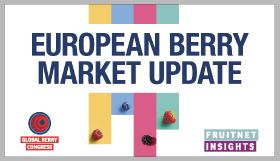 Watch now: European berry market update
