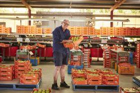 E-commerce focus for Queensland exporters