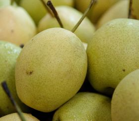 Indonesia set to top pear imports