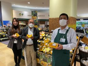 Queensland Kabocha sees success in Japan