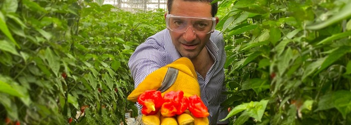 New chillis launched by Bedfordshire firestarter