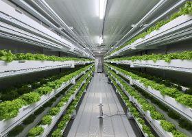 UAE promoting long-term sustainability