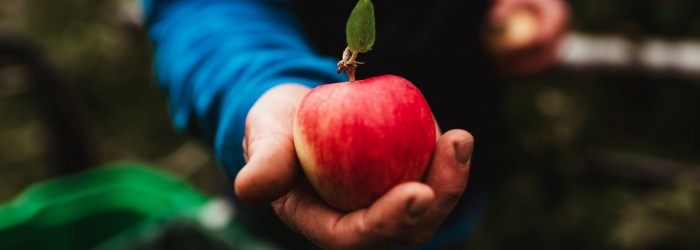 Italian apple suppliers are virtually there