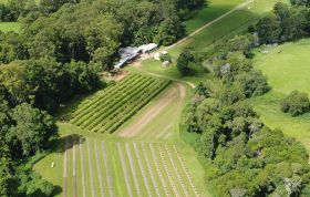 Helping Australian producers' Covid recovery
