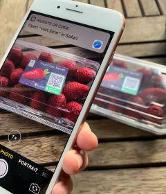 FreshChain digitises end-to-end traceability