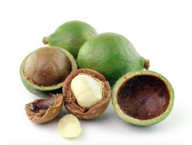 Macadamias get global boost