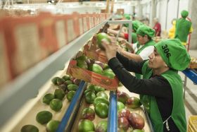 Peru aims to consolidate Asian growth
