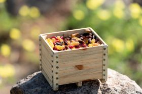Dried Fruit Alliance highlights health in new campaign