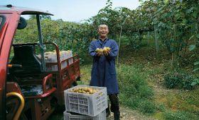 Pinduoduo focuses on produce