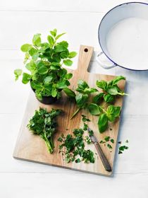 Herb sales surge at Waitrose