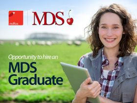 MDS and Redfox in graduate push