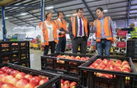NZAPI calls for more RSE workers