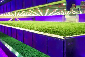 French tech deal for indoor farm group