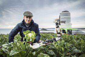 Partnership to build cauliflower bot