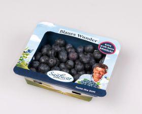 SanLucar unveils sustainable berry punnet