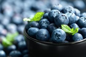 IBO releases new blueberry report