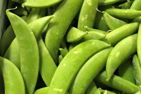 Daikin gets Peruvian snap peas to Japan