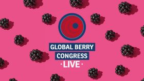 Global Berry Congress goes online