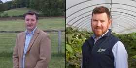 Copas and Gray named Nuffield scholars