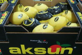 Mixed fortunes for Turkish citrus