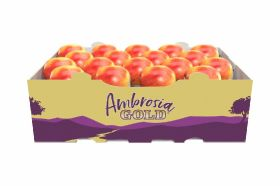 Ambrosia Gold apples retain prominence