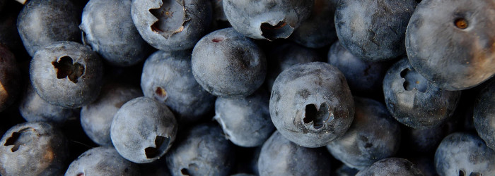 Blueberry spat continues with war of words
