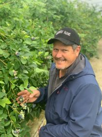 Record volume of blueberries consumed in NZ