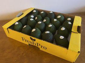 FreshPro trials Myanmar avocados
