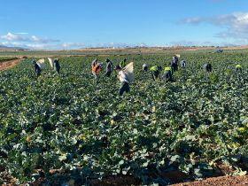 Murcian workers defy strike action