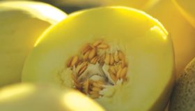 NSW tightens melon traceability