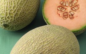 Export insights for AU melons