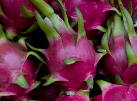 Indian state's new name for dragon fruit