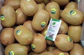 Greek kiwifruit exports stable