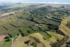 HortNZ calls for land protection