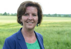Syngenta appoints new UK seeds manager