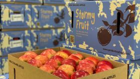 Golden Bay Fruit launches 'Stormy Fruit'