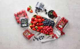 ICA revamps its fresh berry offer
