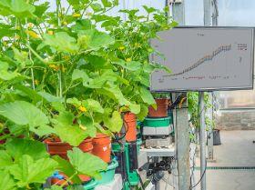 Plantarray aids research effort