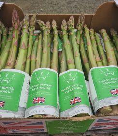 Cobrey Farms auctions asparagus for charity