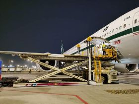Pakistan International Airline to boost exports