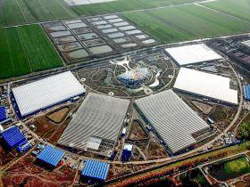Jaguar launches Chinese greenhouse vegetables venture