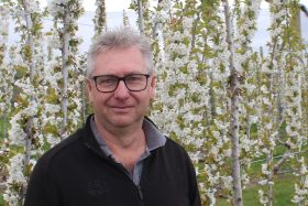 Summerfruit NZ chair to stand down