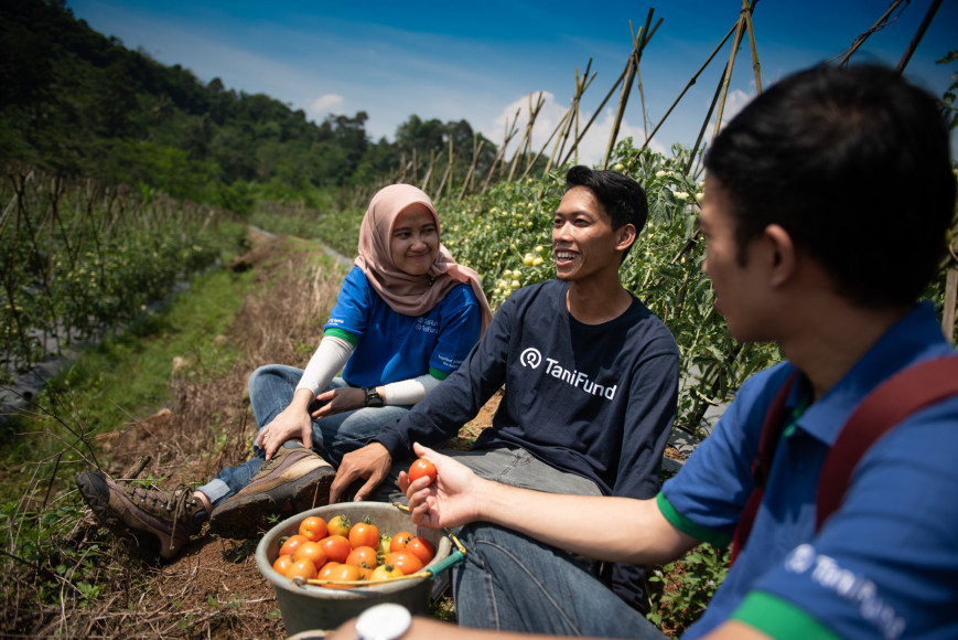 Pandemic shows potential for young Indonesian growers