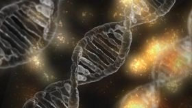 EU to reconsider rules on gene editing