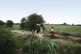 Leaf supports Indian farmers through Covid-19
