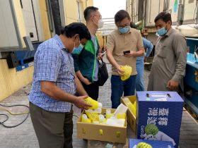 Taiwan custard apples head to UAE